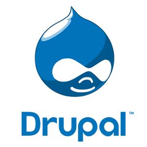 Drupal Support